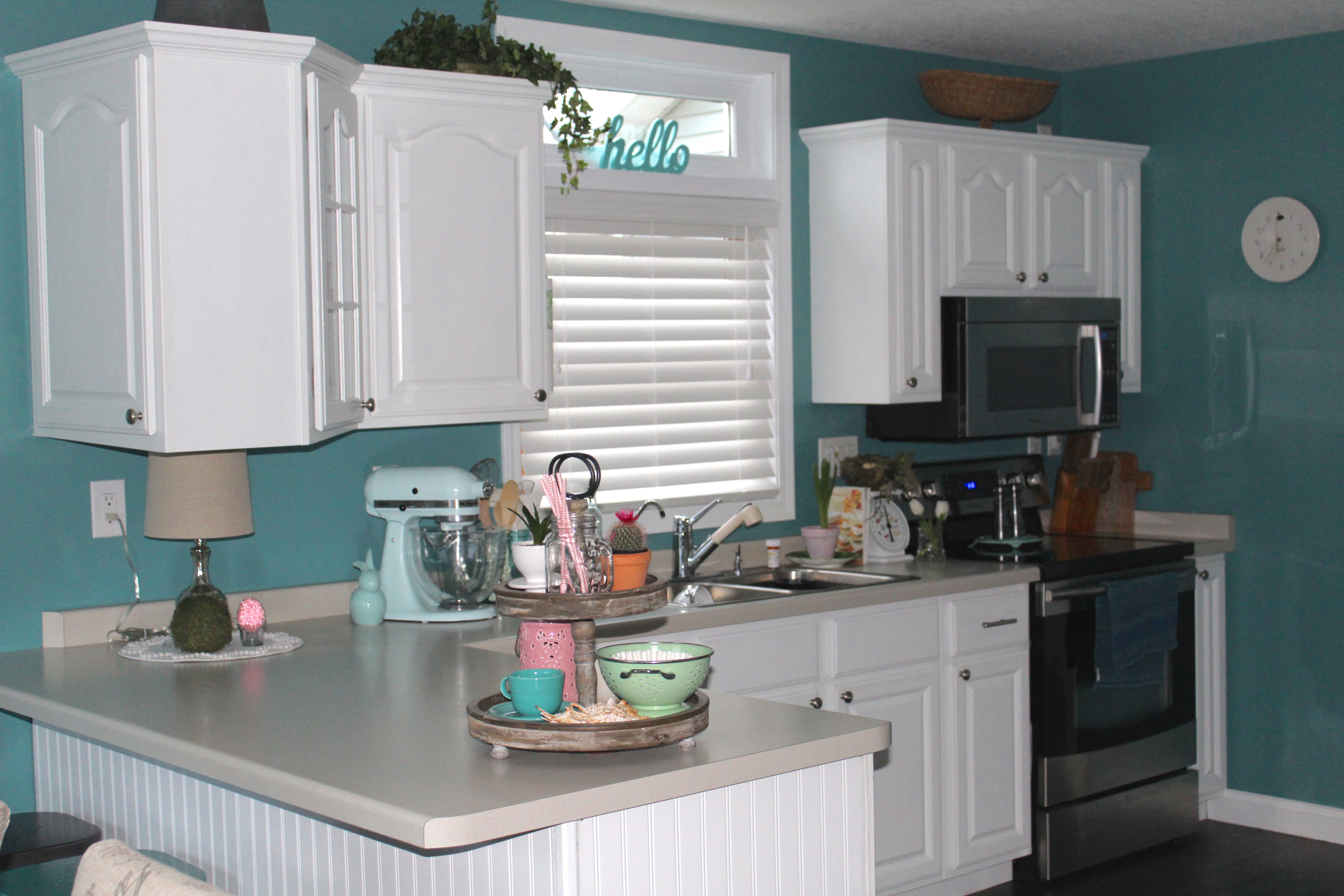 PAINTED THE KITCHEN CABINETS AND NEVER LOOKED BACK!