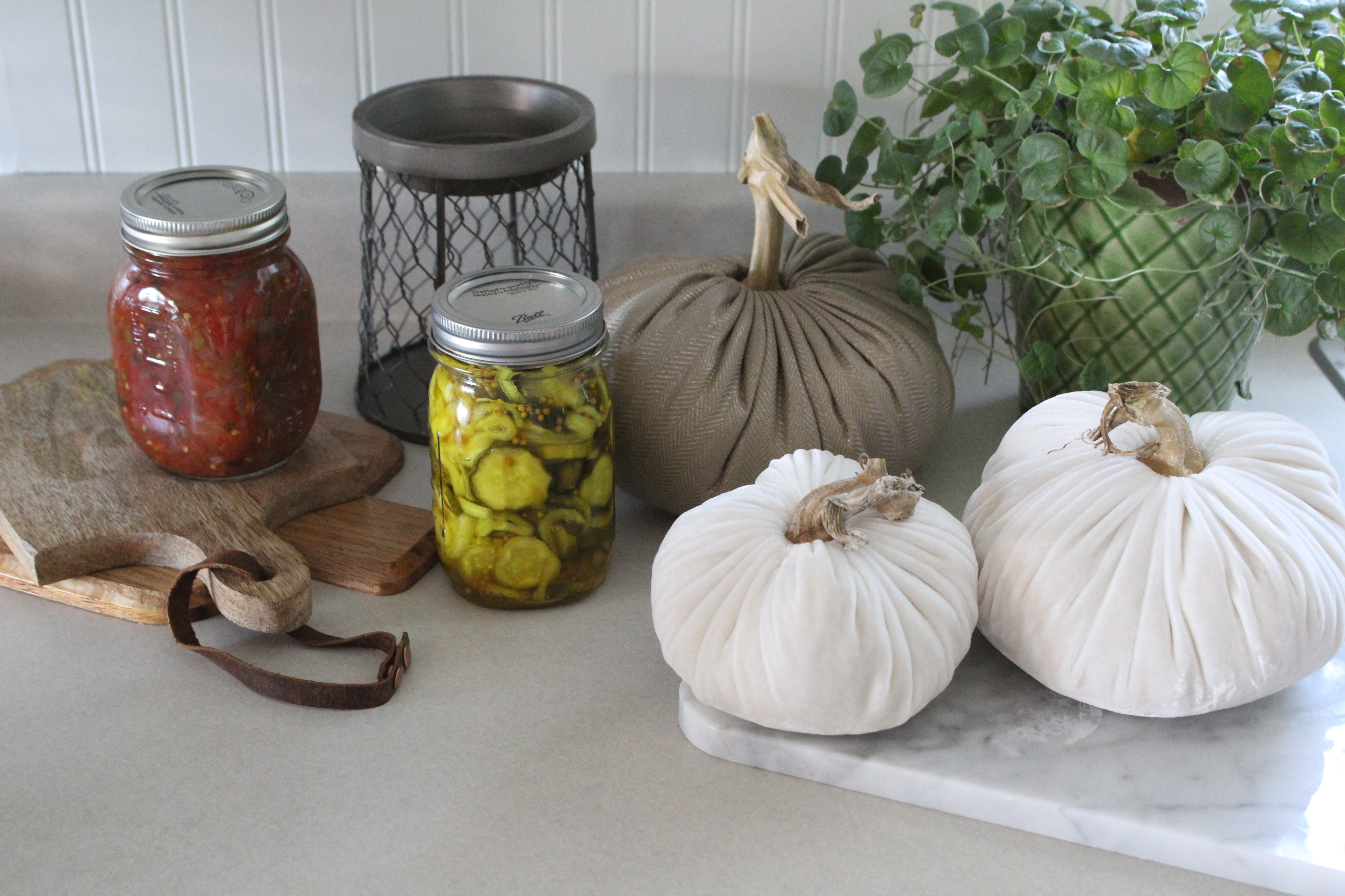 Transitioning to Fall – Recipe and All