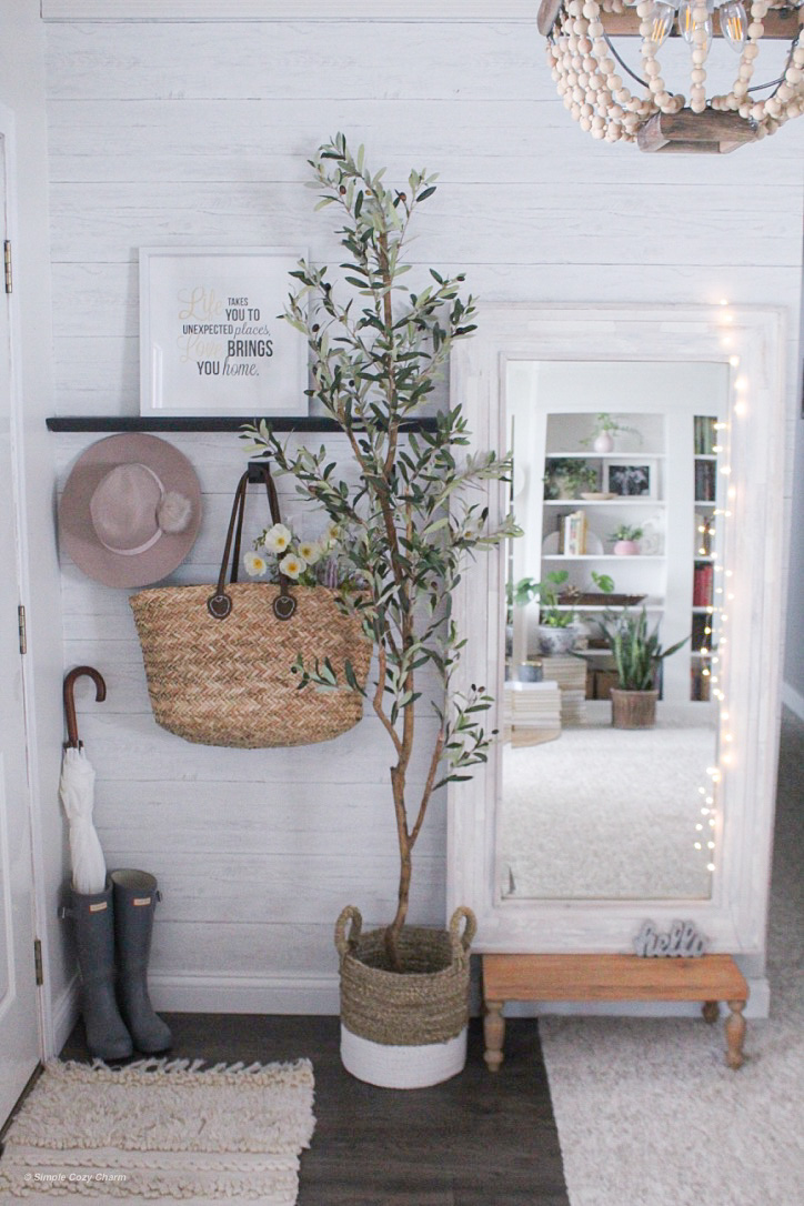 an olive tree perfect for small entryways